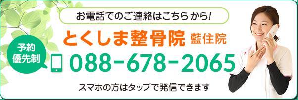 電話番号:088-678-2065